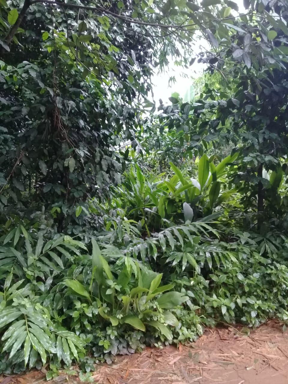Tanah cocok untuk invest dekat perumahan harvest cibubur