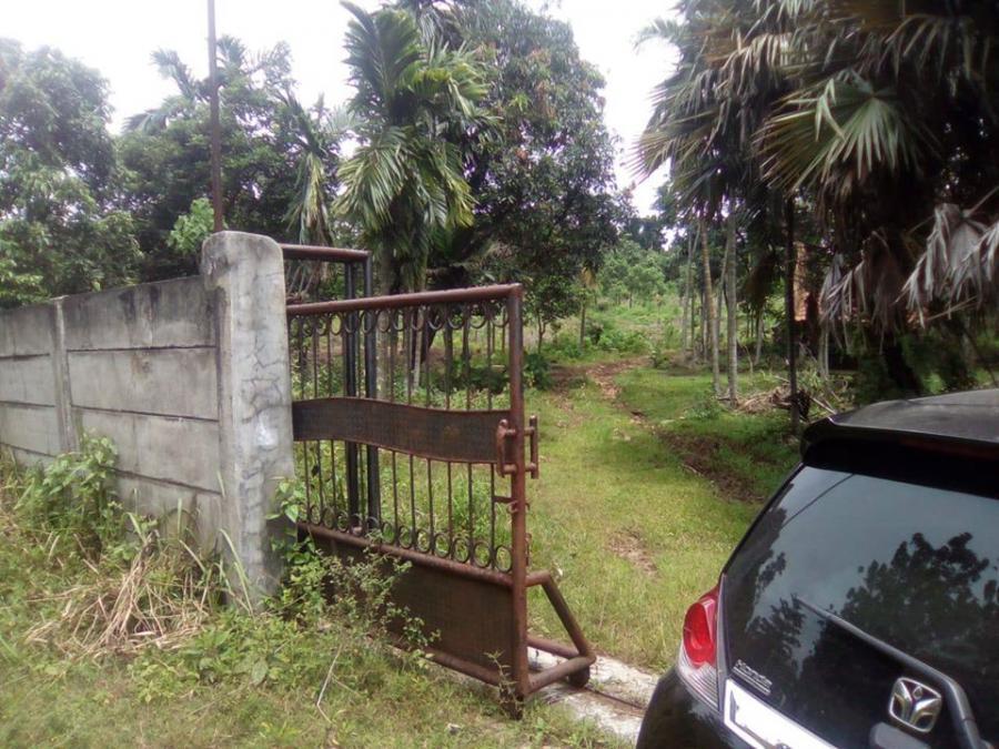 Tanah Klapa Nunggal Bogor